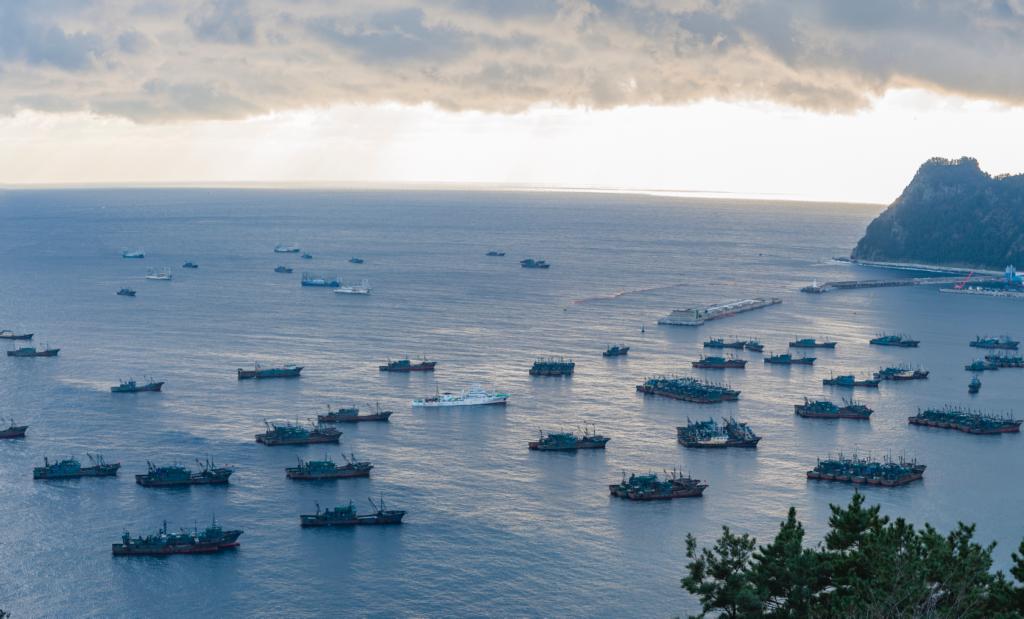 テクノロジーで暴く SDGsターゲットの一つIUU漁業