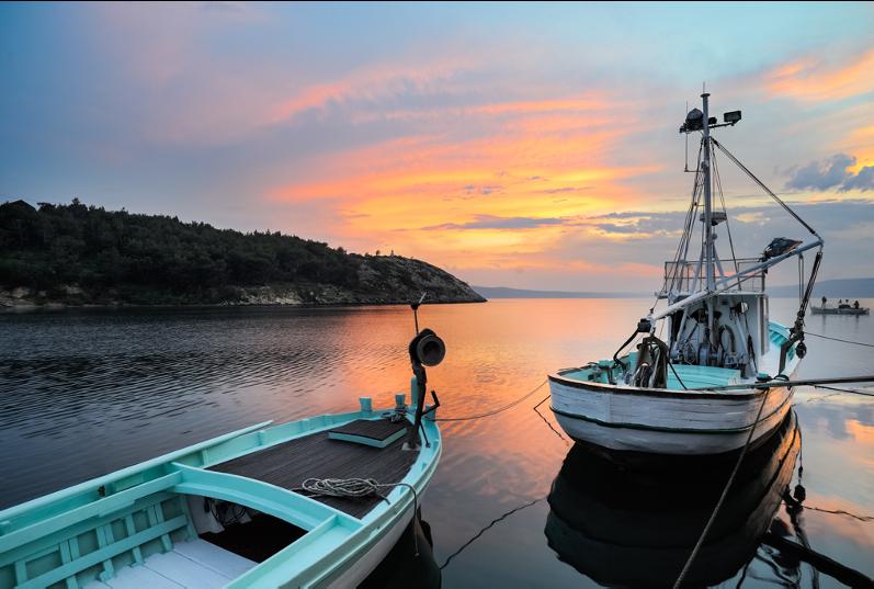 何が問題?IUU(違法・無報告・無規制)漁業